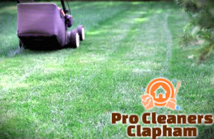 lawn-mowing-services-clapham