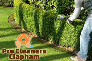 Hedge Trimming Clapham