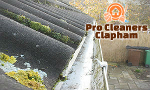 gutter-cleaning-services-clapham